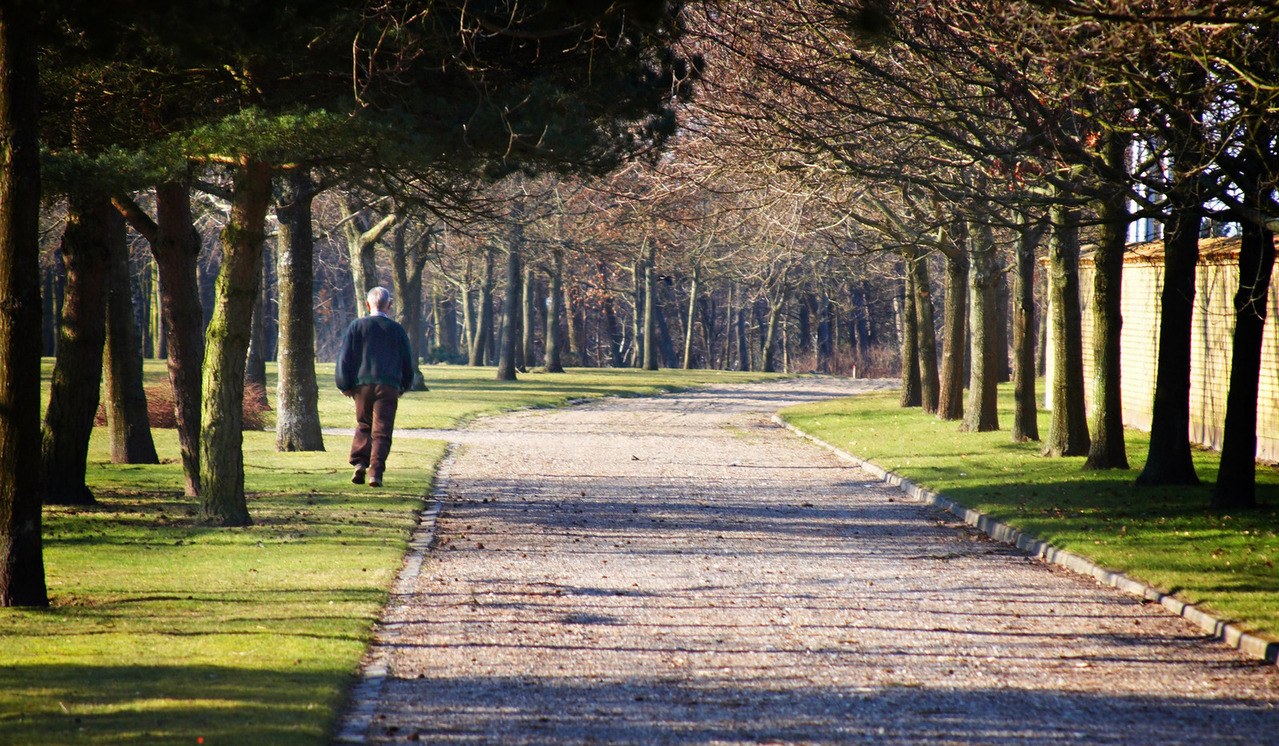 man walking in a park